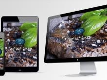 Petit Bateau Website